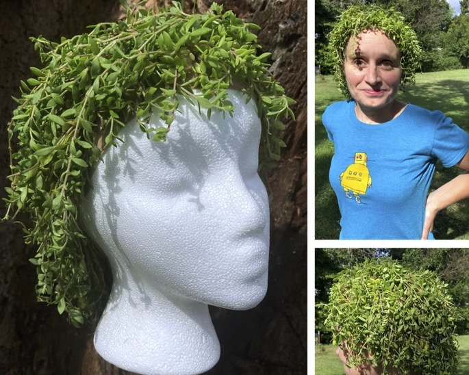 Bored with your hair? This living plant-wig could be just what you need | Boing Boing