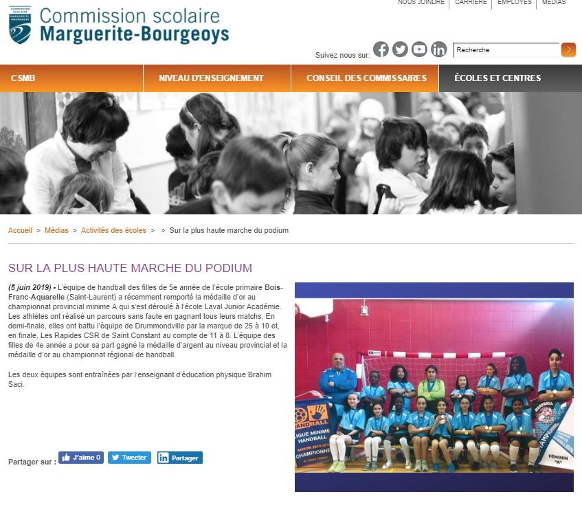 Handball Ecole Bois Franc Aquarelle