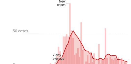 NY Times Boise data