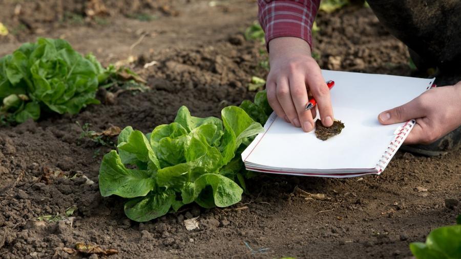 A universidade impulsa a produción ecolóxica