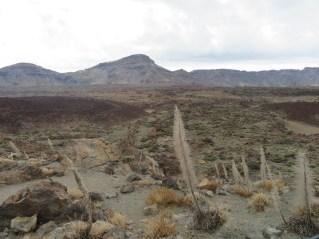 Kaldera Canasa
