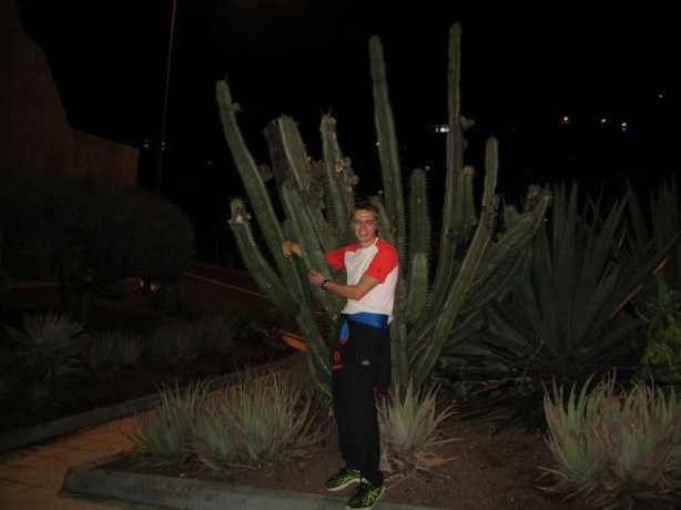 Objem kaktusa