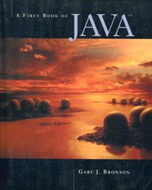 A First Book of Java - Gary J Bronson