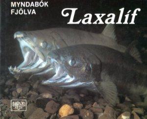 Laxalíf - Atsushi Sakurai og Þorstein Thorarensen