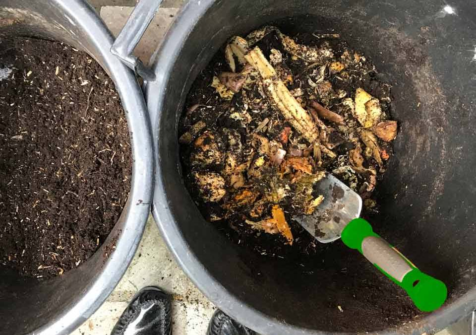 Urban…Composting ?