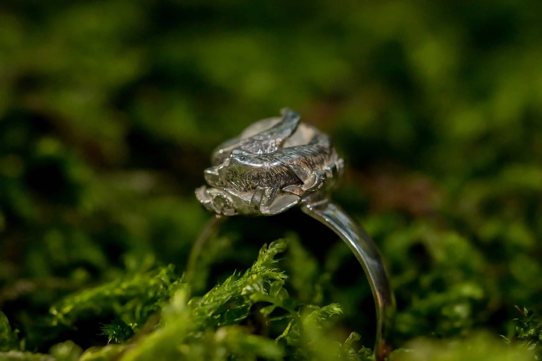 Jak zrobić zdjęcie biżuterii - tamron makro 90mm