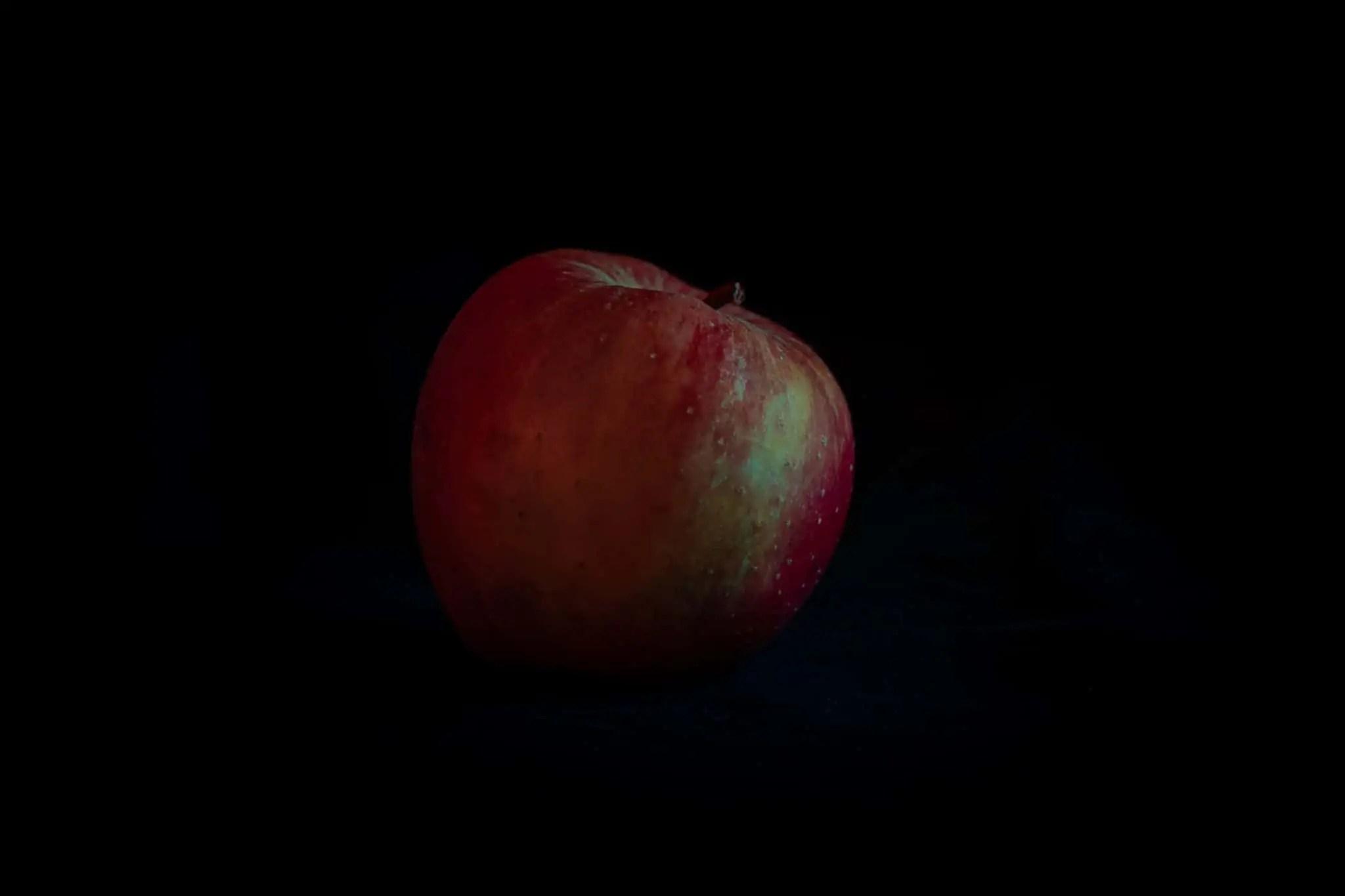 Zdjęcia jabłek w stylu rembrandta 1 2 scaled - Zdjęcia jabłek - polskie owoce