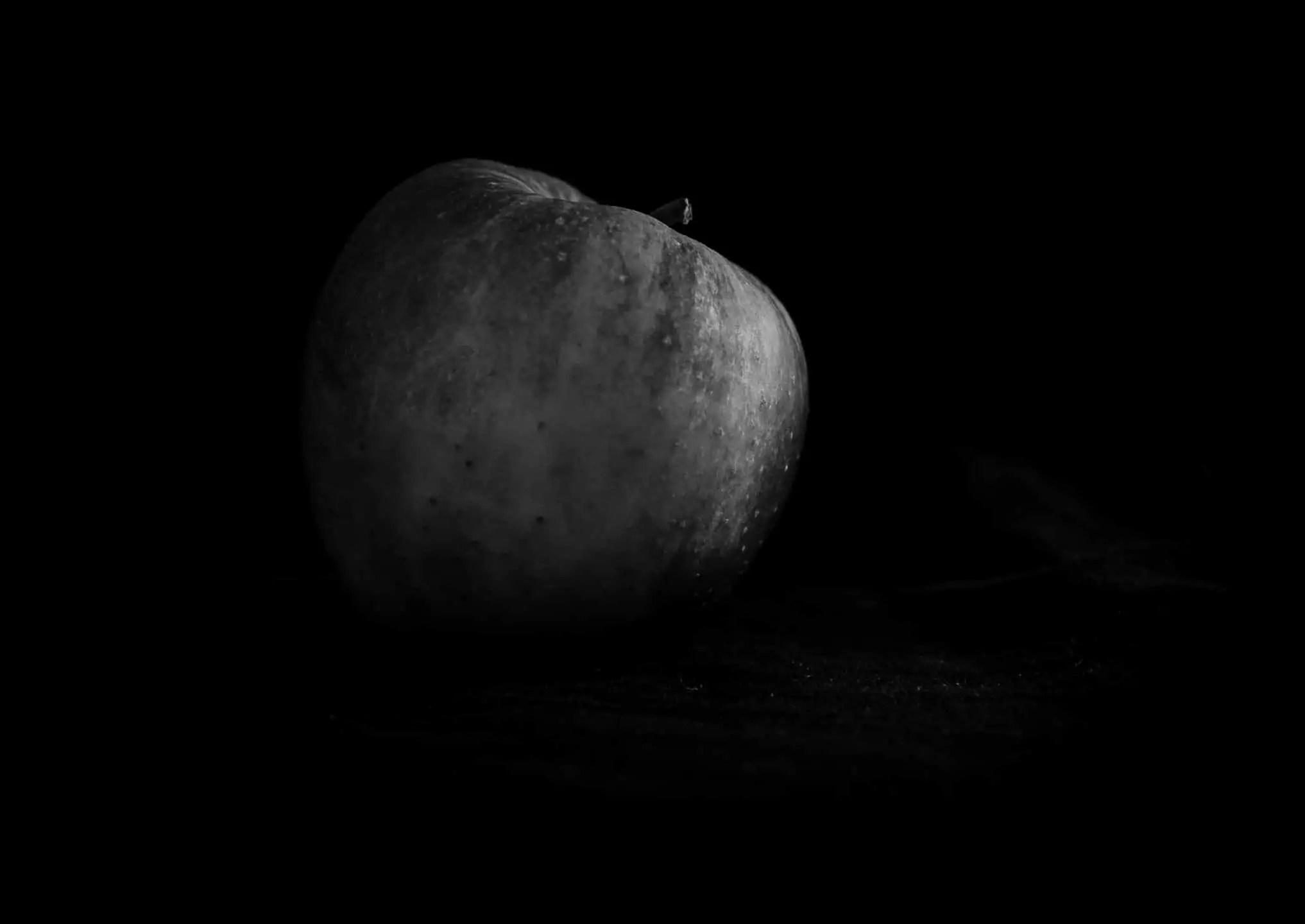 Zdjęcia jabłek w stylu rembrandta 4 - Zdjęcia jabłek - polskie owoce