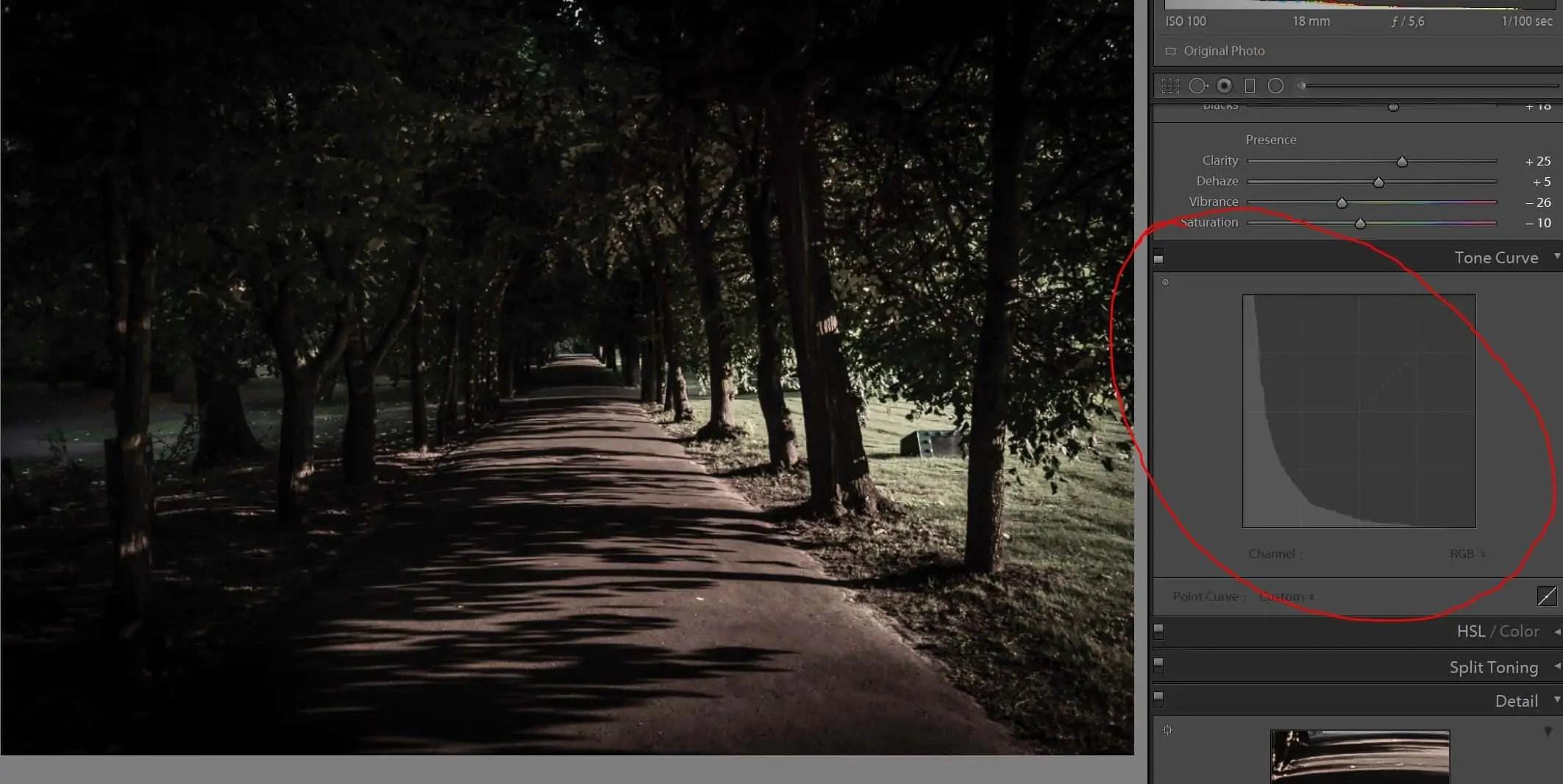 Park Oliwskiejak w filmie zdjecie originalne PRZED - Filmowe zdjęcie ? Wystarczy 1 krok, aby je zrobić !