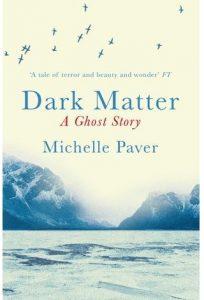 dark matter paver