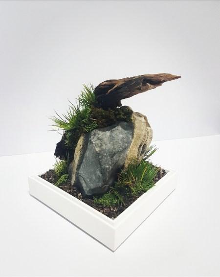 Bokkusu Terrarium Scape by Crustapets 03