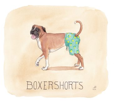 boxershorts illustration ordvits