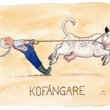 kofångare illustration ordvits