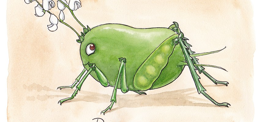 bönsyrsa illustration ordvits
