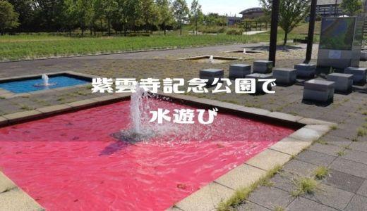 【新潟県新発田市】紫雲寺記念公園の噴水で水遊びっ
