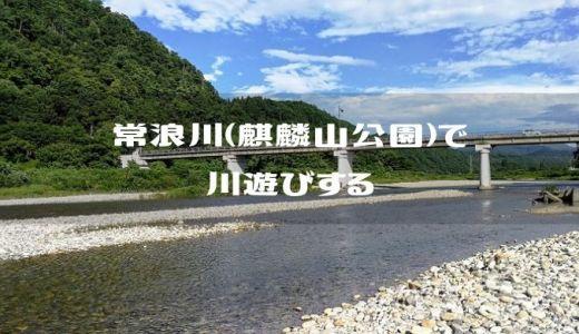 【新潟県東蒲原郡】常浪川(とこなみがわ)で川遊び【麒麟山公園】