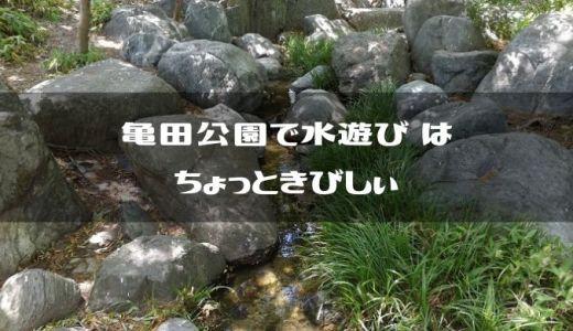 【新潟市江南区】亀田公園は遊具が沢山あって良い公園なんだけど水遊びはちょっと厳しい