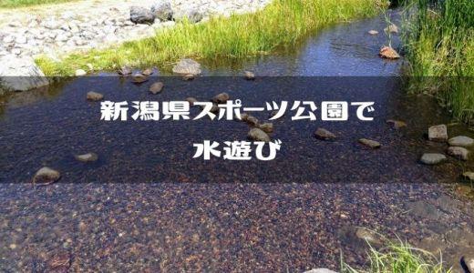 【新潟市中央区】新潟県スポーツ公園で水遊び【穴場】