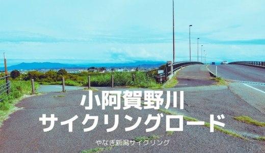 小阿賀野川サイクリングロードをロードバイクで走ってきた
