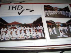 Tae Kwon Do Club