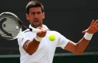 Novak Djokovic pode integrar tenista recém retirado na sua equipa técnica para 2018
