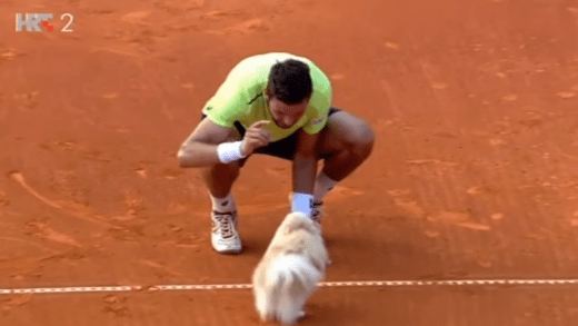 [VÍDEO] Vesely ganha em Umag e festeja… com o cão!