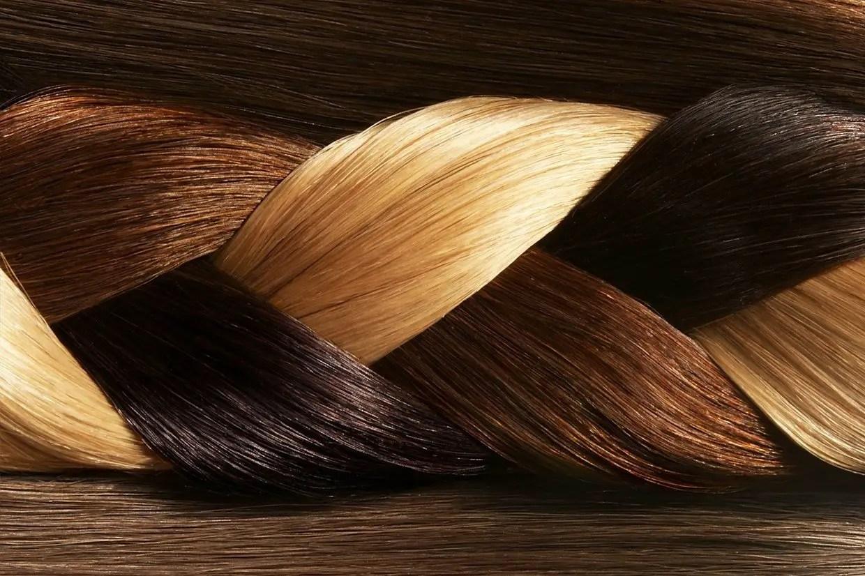Hair And Hair Types