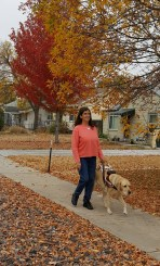Jo with her yellow Labrador guide dog Anlyn walking on leaf strewn tree-lined sidewalk with gold, red and orange autumn trees.