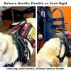 Balance handle flexible vs semi rigid  - Balance Assistance Harness™ for service dogs