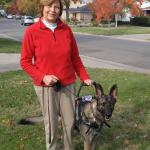 Peper Jan and Sasha in harness 2 red - Service Dogs in Action
