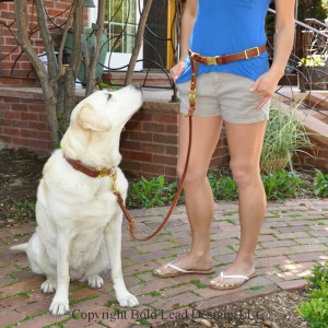 Belt Leash with QR buckle on model - Leather Belt & Leash System - a custom hands-free belt with detachable leash