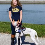 dahlin heather and ibezen hound - Service Dogs in Action