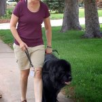 fisher caroleann and finn 0071 - Service Dogs in Action