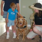 kat helps fit ellies new harness - Service Dogs in Action