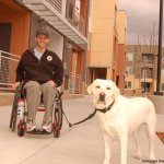 kirk bella long lead - Service Dogs in Action