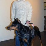 megan and chobe xl harness - Service Dogs in Action