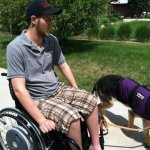 short lenth working 1 - Service Dogs in Action