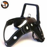 LAH 754 150x150 - Measuring for your custom harness