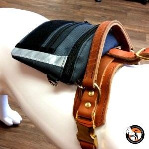 Accessory Pouch for Harness (or waist pack)