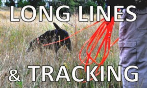 View long lines and tracking leads