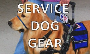 View all BLD Service Dog Equipment
