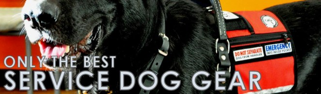 About BLD's Service Dog Gear