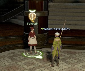 If it wasn't for the quest icon, I would think she's one of the many many gil sellers, hah!