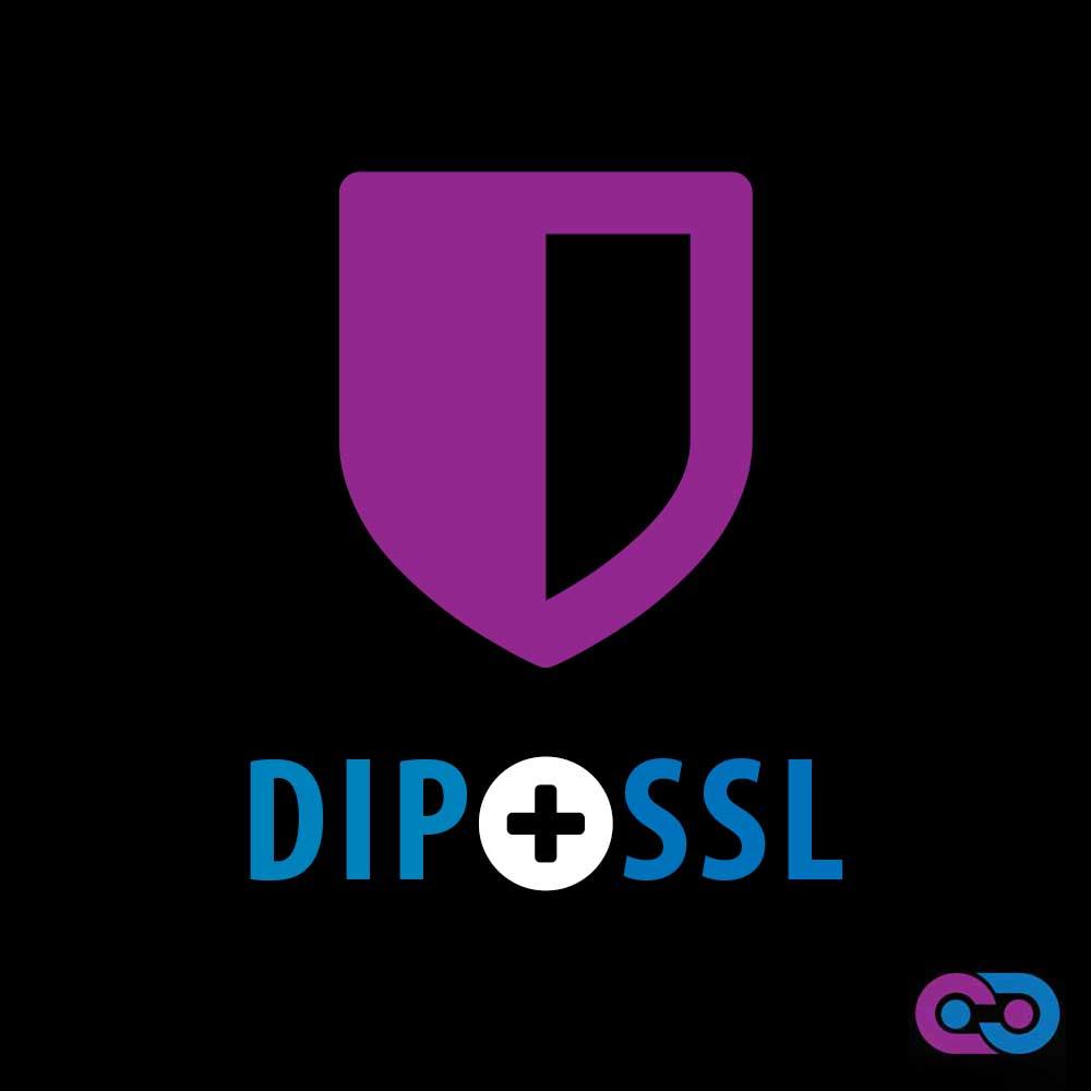Dedicated Ip And Ssl Bold Mark Creative