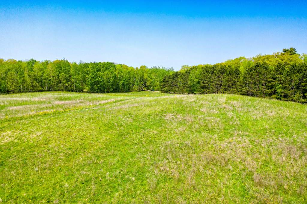 XXX-grassy-lake-rd-barronett (11)