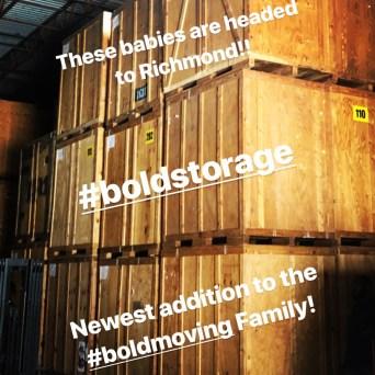 bold image 13