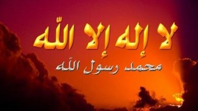Photo of الحرب الاعلامية ضد النبي ﷺ وإسلام ضماد