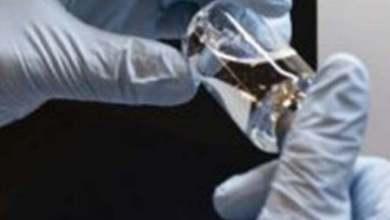 Photo of عاجل.. أول لقاح بالعالم يقضى على فيروس كورونا..ايطالى المنشأ