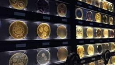 Photo of متحف الميكروبات الوحيد بالعالم..فى امستردام..شاهد الفيديو..