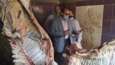 Photo of ضبط جزار لذبحه خارج السلخانة وبحوزته أختام مزورة لختم اللحوم بمنوف